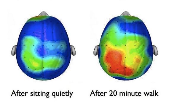 Actividad-Cerebro-Después-Deporte